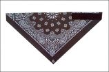 Dust Bandit Paisley Black Star