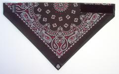 Dust Bandit Black/Red/White Paisley